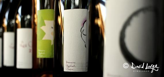 creation-etiquettes-vin-chopin-570